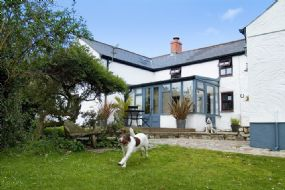 Bramble Cottage Dog Friendly Holidays Cornwall | St Ives Pets welcome Here